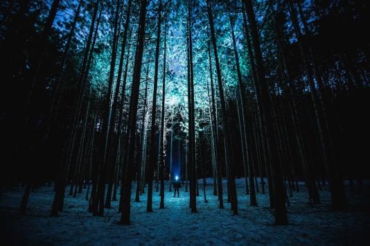 flashlight-in-woods