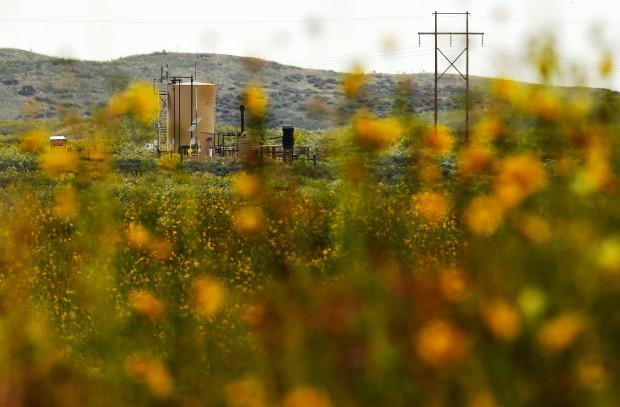 Watts bodies found at oil site
