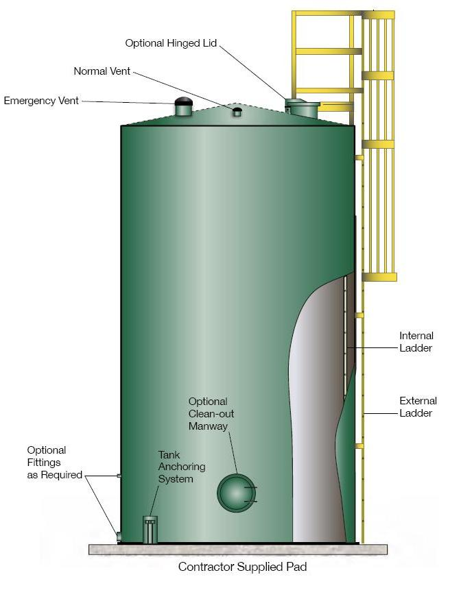 AST Ladder Illustration Side View
